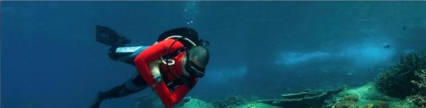 Malayasia diving