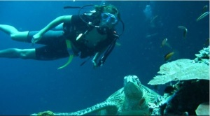 Underwater diving in Malayasia 3