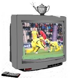 Pot on TV