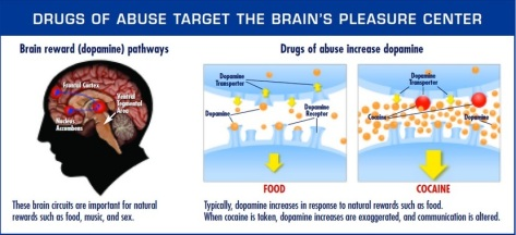 Drugs of Abuse affect our brain