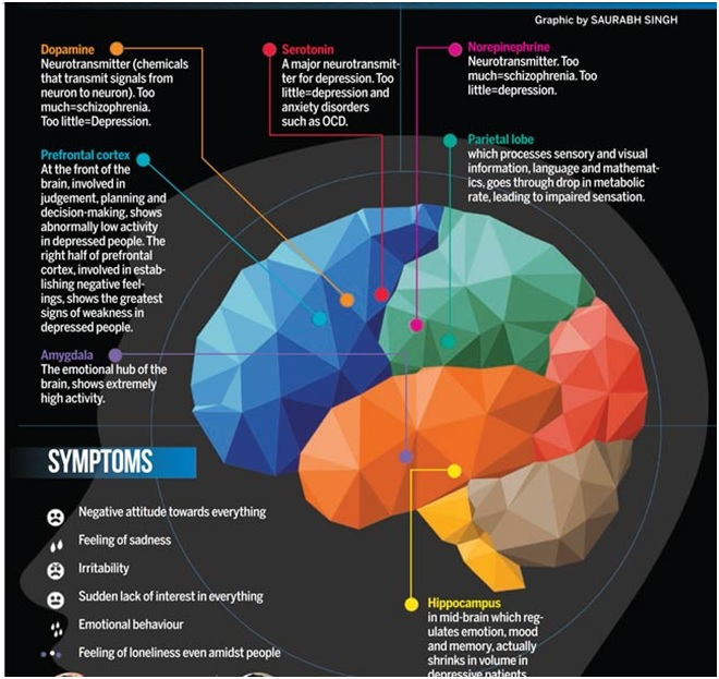 Depression - Function of our brain
