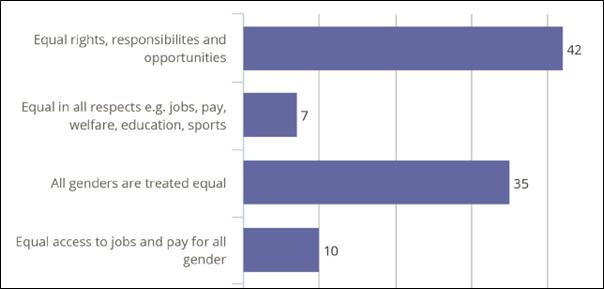 Gender Equality Definition NZ